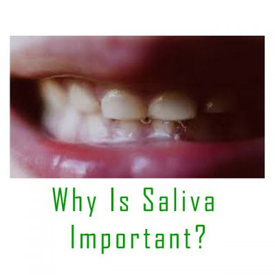 https://www.webmd.com/oral-health/what-is-saliva#1